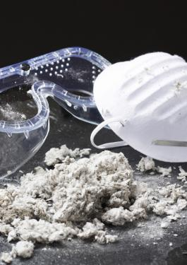 Asbestos Identification & Management